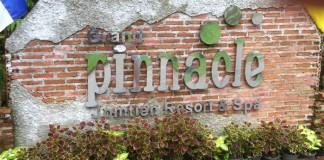 Лицензию на Антигуа не будет продлевать букмекер Pinnacle